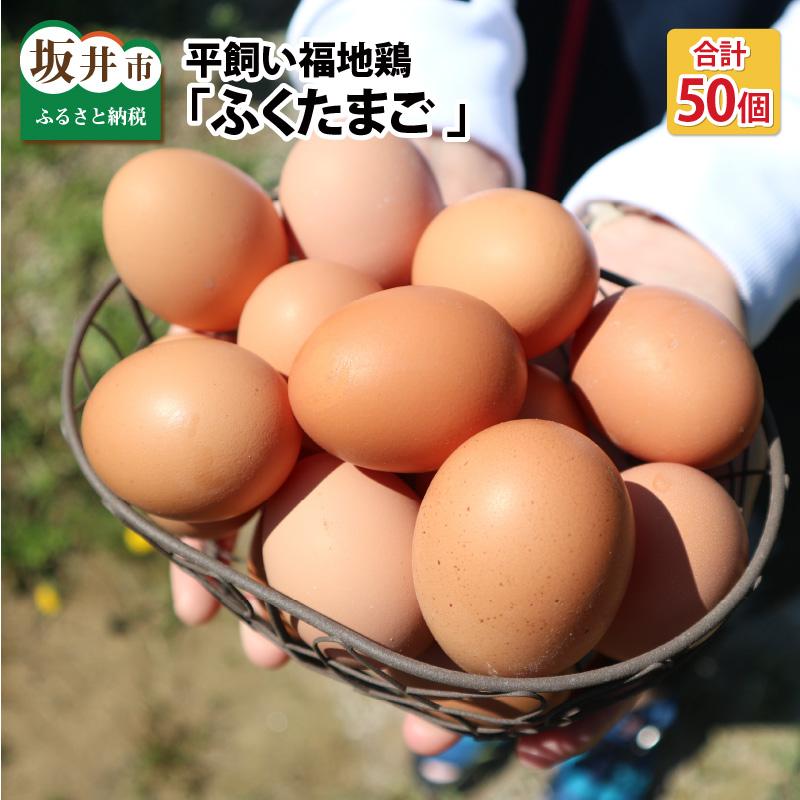 2020 新作 自社農場で飼育されている 平飼い福地鶏 ブランド品 のたまご ふるさと納税 10個 5パック ふくたまご ×