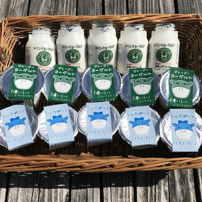 牧場直送 ジャージー牛の新鮮な牛乳を使用した乳製品をお届けします ふるさと納税 山之村牧場 ヨーグルト Q221 営業 飲むヨーグルト たっぷり詰まった乳製品15点セット 定番キャンバス プリン