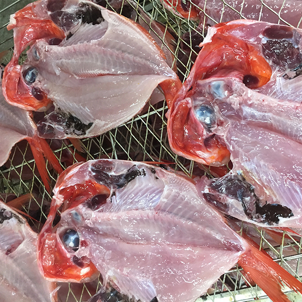 【ふるさと納税】a30-176 【旬の魚10種以上】ヤマクニの朝干し!ひものセット3