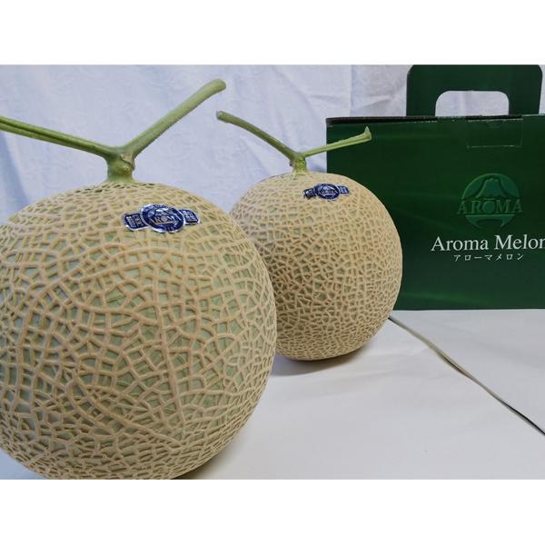 【ふるさと納税】a30-201 焼津産 温室 マスク メロン アローマ メロン 2玉