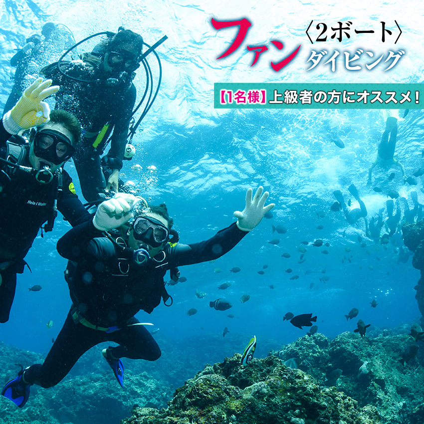 【ふるさと納税】のんびり2ボートダイビング(フルレンタル)