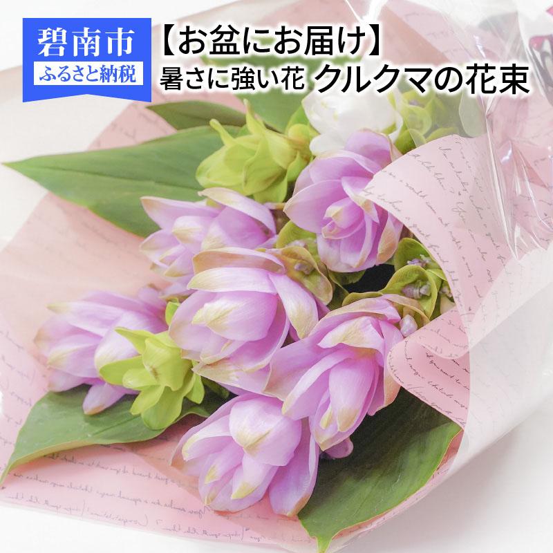 【ふるさと納税】【お盆にお届け】暑さに強い花 クルクマの花束 H092-010