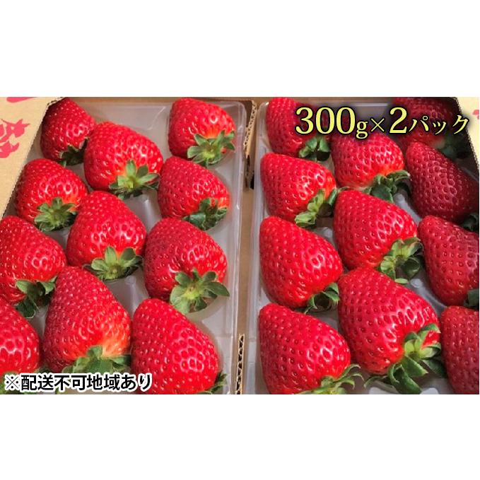 【ふるさと納税】今西さん家の奈良いちご古都華300g×2パック 【果物類・いちご・苺・イチゴ】 お届け:2020年12月中旬~2021年3月中旬