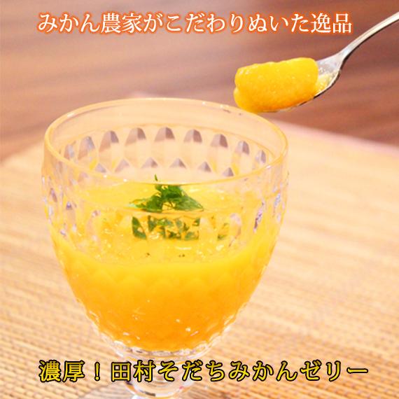 【ふるさと納税】■濃厚!田村そだちみかんゼリー