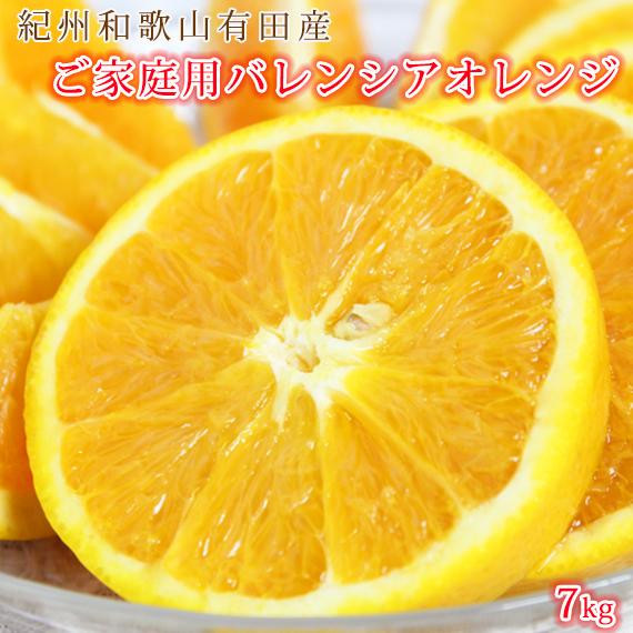 【ふるさと納税】【ご家庭用 訳あり】希少な国産バレンシアオレンジ 7kg※2021年6月中旬~7月中旬頃発送の商品になります