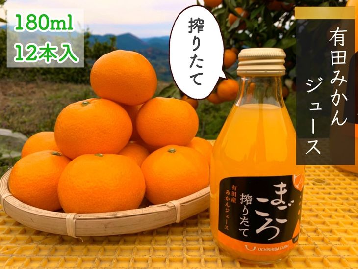 【ふるさと納税】【まごころ】有田みかんジュース100% 180ml 12本