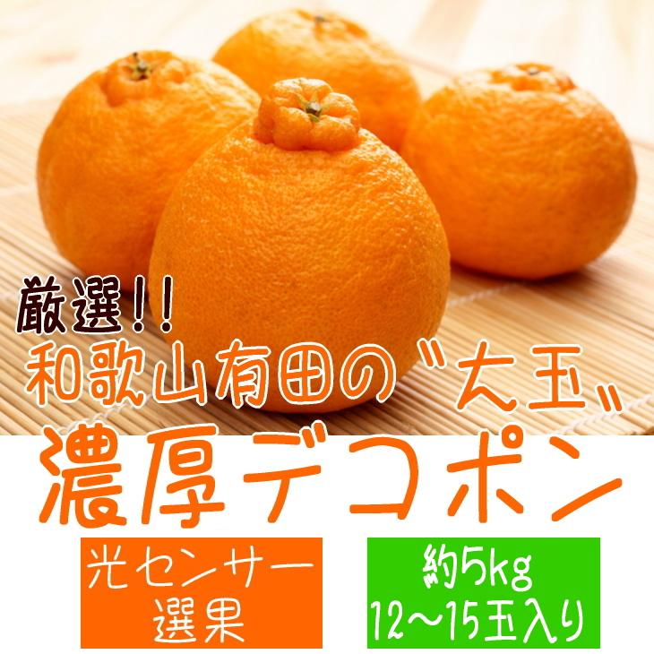 【ふるさと納税】■【先行予約】厳選!!和歌山有田の濃厚