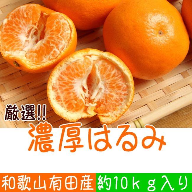 【ふるさと納税】厳選!和歌山有田の濃厚はるみ 約10kg(Sサイズ)※2021年1月下旬頃より順次発送予定