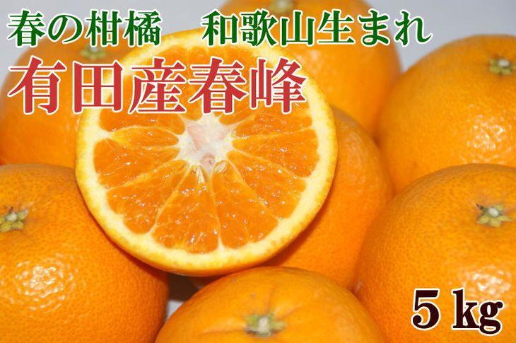 【ふるさと納税】■和歌山で生まれた春にぴったりの柑橘 有田産「春峰」約5kg※お届け日指定不可※2020年3月上旬~3月中旬頃に順次発送予定