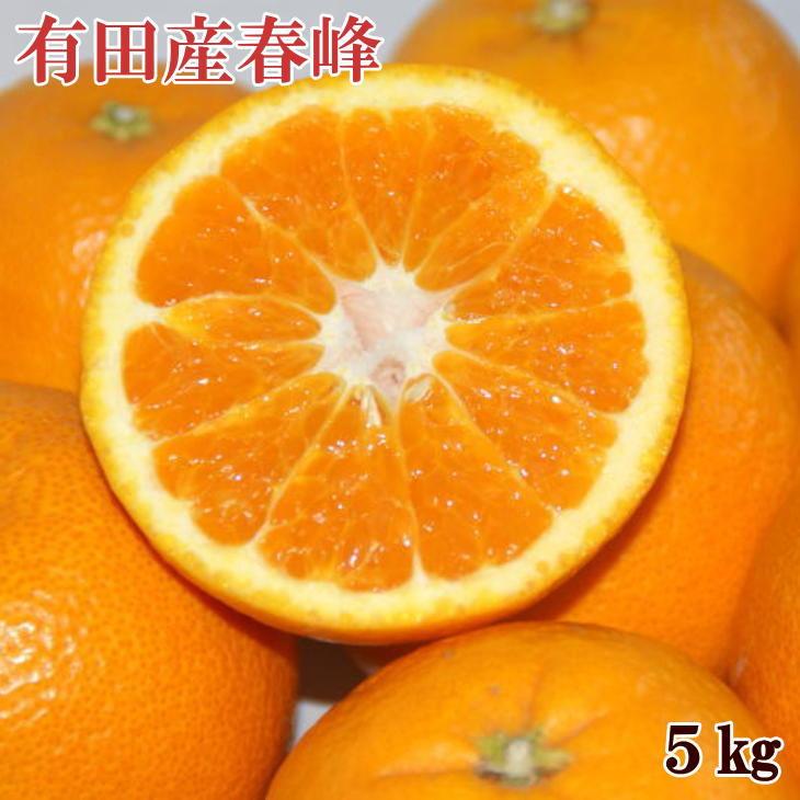 【ふるさと納税】■和歌山で生まれた春にぴったりの柑橘 有田産「春峰」約5kg※お届け日指定不可※2021年3月上旬~中旬頃に順次発送予定
