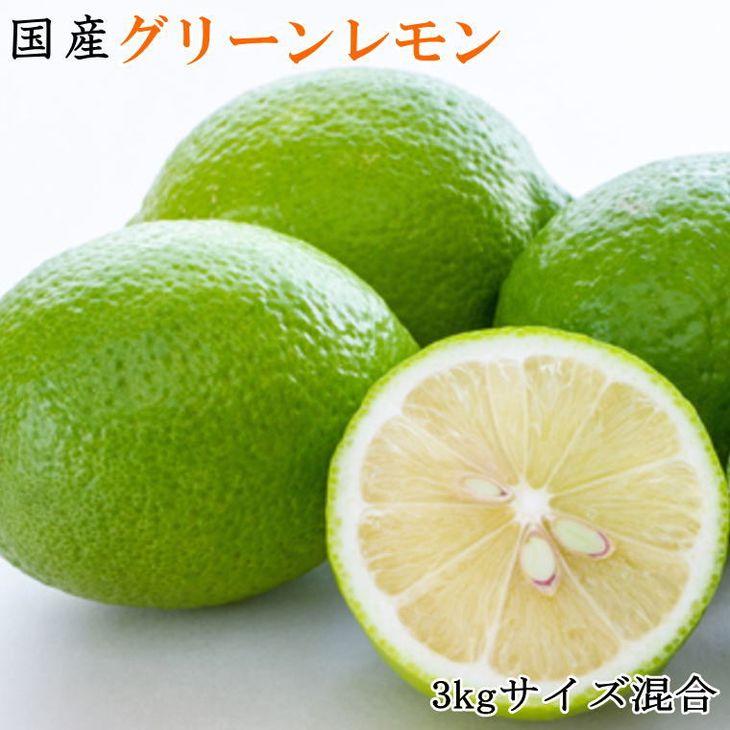 【ふるさと納税】【産直】和歌山産グリーンレモン約3kg(サイズ混合) ※2021年10月中旬~11月上旬頃に順次発送予定