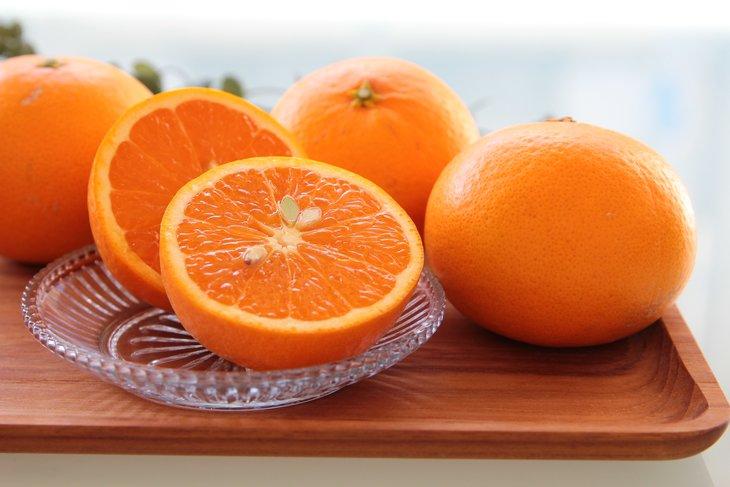 オンライン限定商品 ふるさと納税 主井農園 開催中 高級清見オレンジ 青秀 約2.5kg