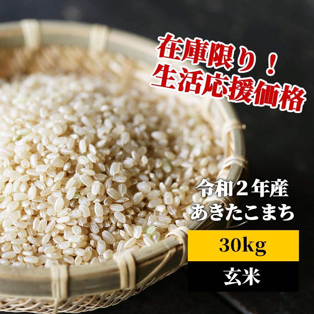 【ふるさと納税】K1 あわくら源流米 あきたこまち 玄米30kg