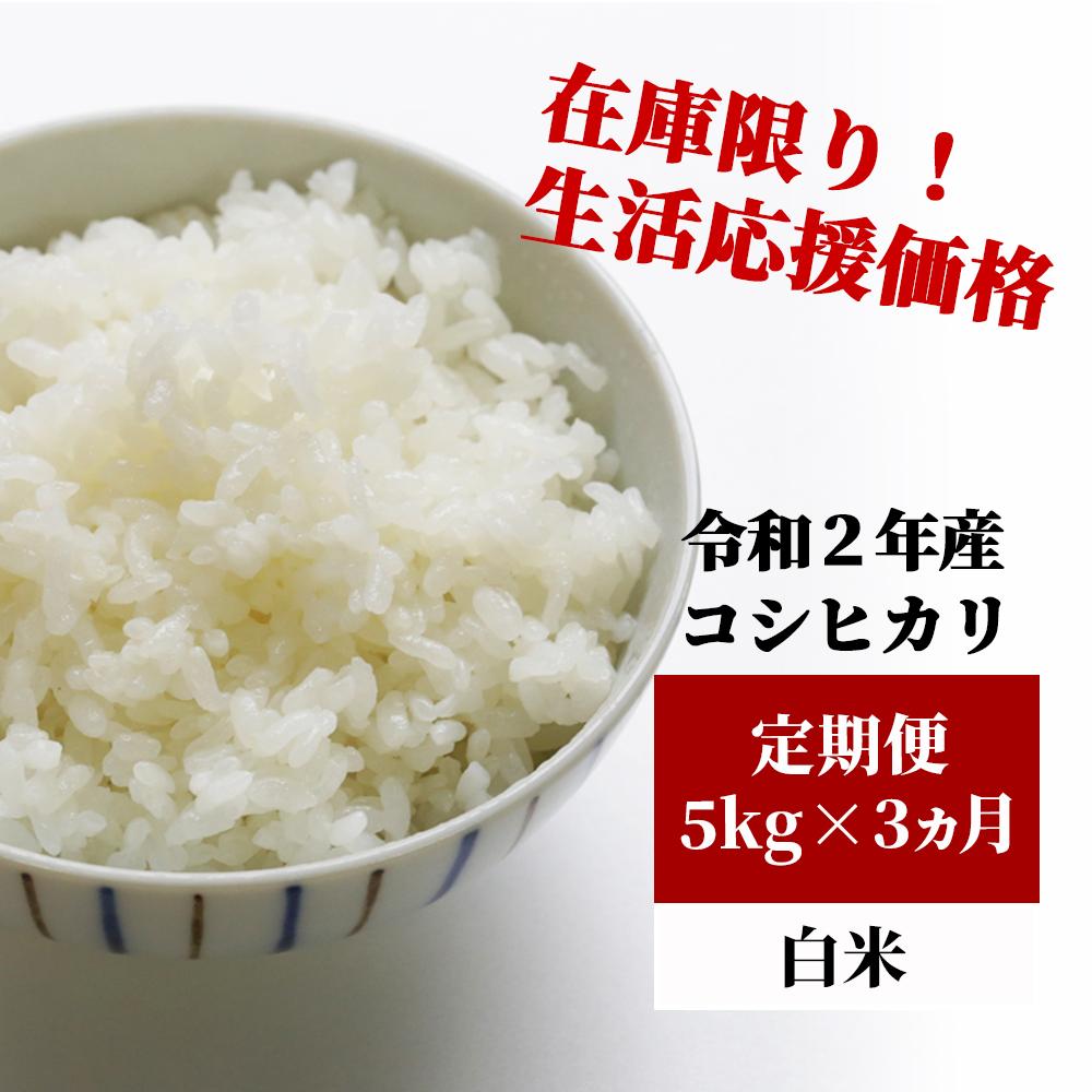 新品 【ふるさと納税】K27 定期便 あわくら源流米 コシヒカリ 白米5kg×3, インテリア高錦 af707881