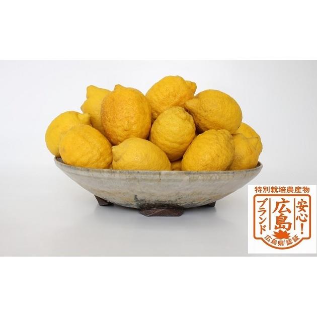 【ふるさと納税】宝韶寿-ほうしょうじゅ-約5kg【特別栽培レモン】 【果物類・柑橘類・レモン・檸檬・フルーツ】 お届け:2020年4月上旬~2020年8月中旬