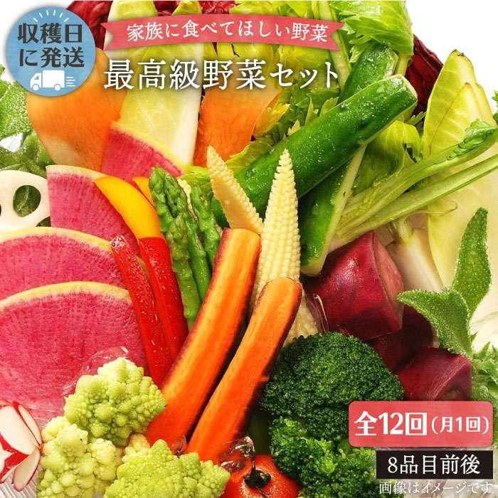 【ふるさと納税】【全12回】【最高に贅沢な野菜】☆畑直送☆こだわり有機栽培[最高級野菜]セット_オーガニックナガミツファーム [AGE018]