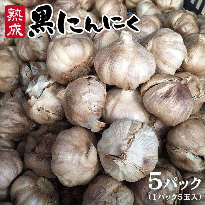 【ふるさと納税】熟成黒にんにく(5パック) AHC003