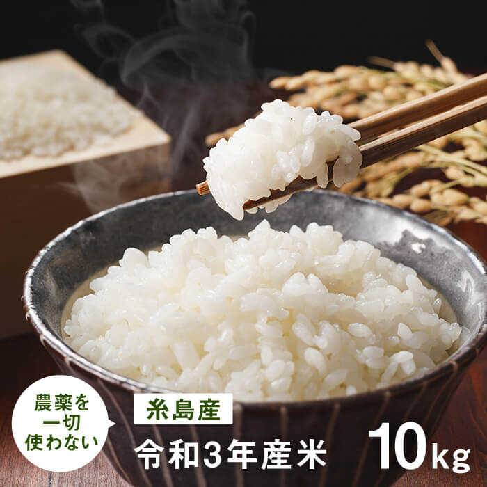 【ふるさと納税】農薬を一切使わないお米 【令和元年米】 10kg 吉永紫 AHC007