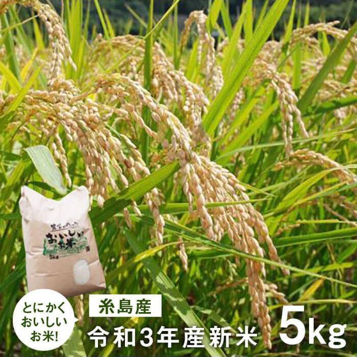 【ふるさと納税】令和2年新米 とにかくおいしいお米 5kg 福岡 糸島 吉永紫 AHC021