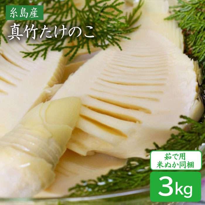 【ふるさと納税】産地直送「真竹」3kg たけのこ タケノコ 筍 AHC027