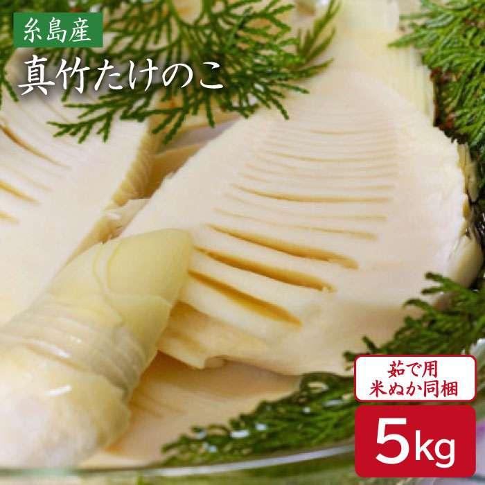 【ふるさと納税】産地直送「真竹」5kg たけのこ タケノコ 筍 AHC028
