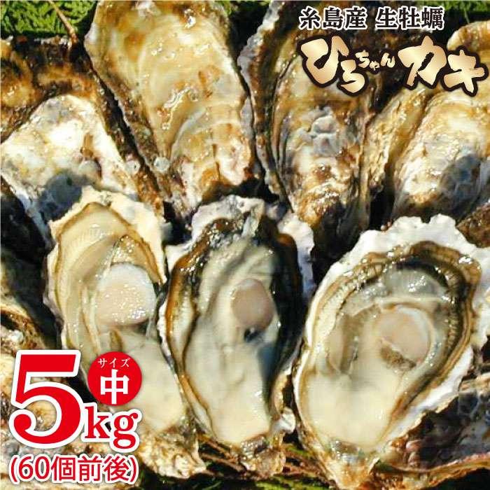 ふるさと納税 ひろちゃんカキ中サイズ5kg 60個前後 セットアップ 牡蠣 牡蛎 人気の定番 AJA010 福岡県糸島市加布里漁港