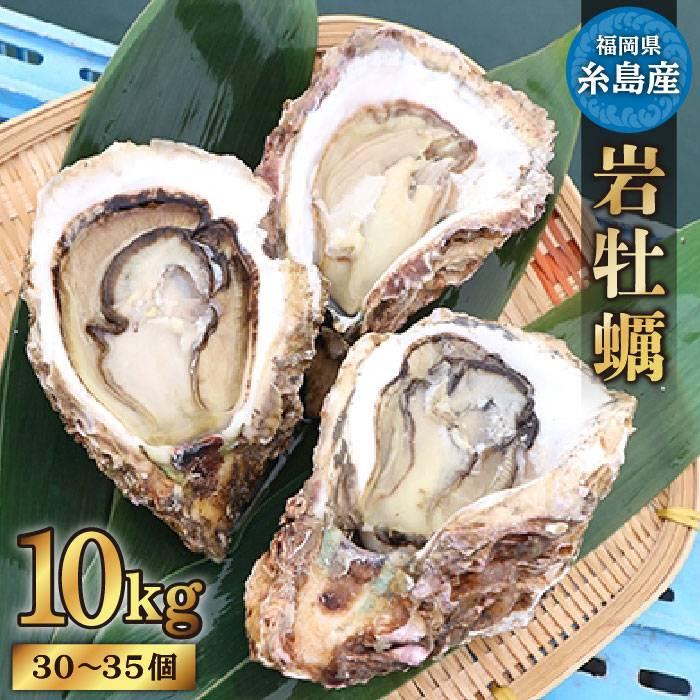 【ふるさと納税】糸島産特大岩牡蠣10kg(30~35個)かき カキ 牡蛎 濃厚 クリーミー[AKD013]