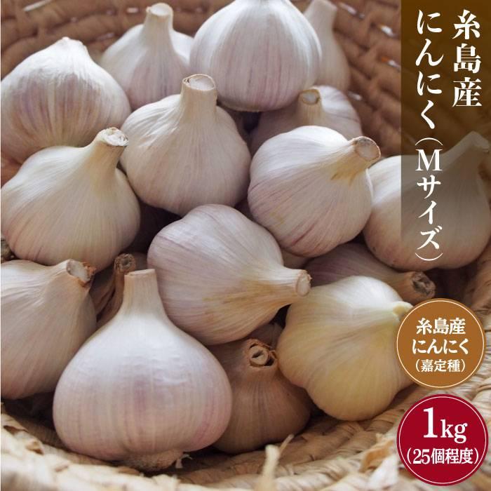 【ふるさと納税】糸島産にんにく(M)1kg [ARB016]