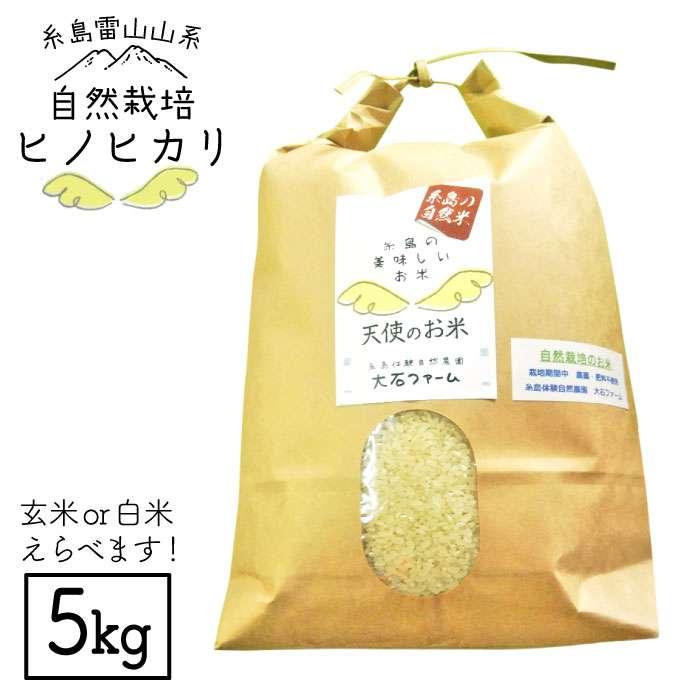 【ふるさと納税】自然栽培ヒノヒカリ5kg_大石ファーム ATE001