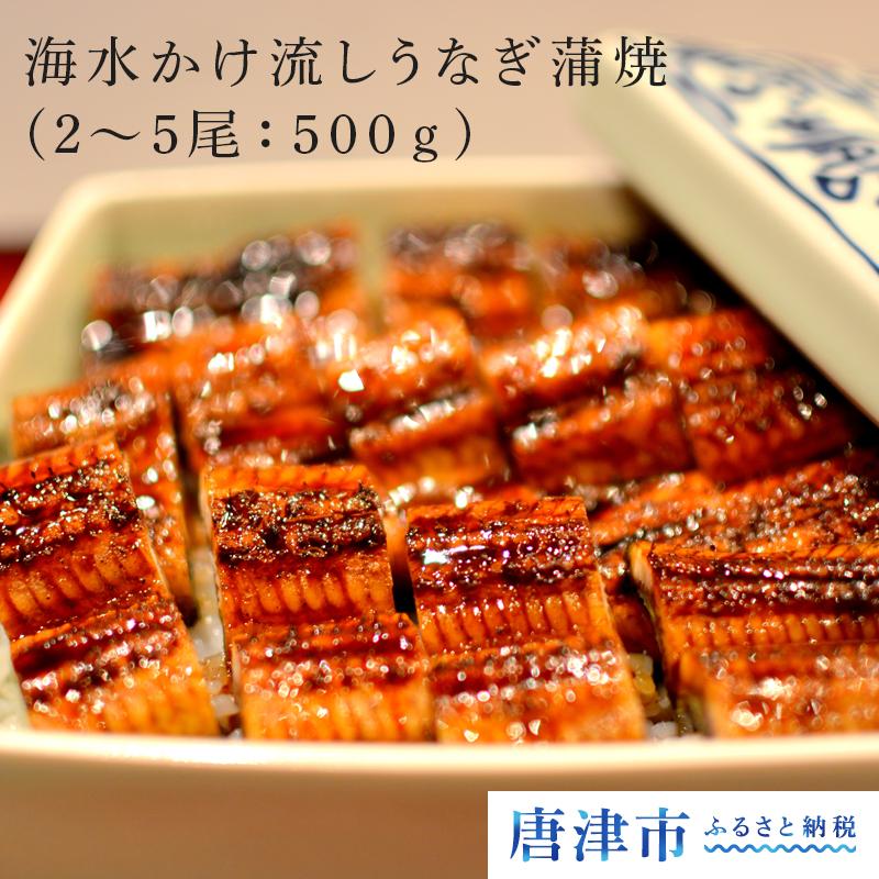 【ふるさと納税】海水かけ流しうなぎ蒲焼(2~5尾:500g) ウナギ 鰻