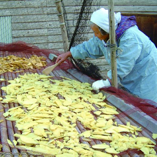 本物 長崎の伝統食、長崎の風土が育む干し芋 カンコロ の餅 つきたてかんころ餅 商店 無添加 ふるさと納税