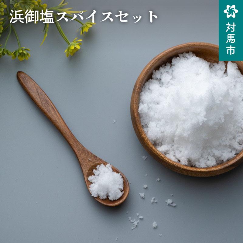 送料無料 塩 浜御塩 調味料 対馬の海水で作り上げた浜御塩 ふるさと納税 魔法のだし塩ドラゴンスパイスセット 魔法のだし塩を調味料として加えることにより味に深みが出ます こだわりの塩を是非ご賞味ください 卸直営 高級品 A-173