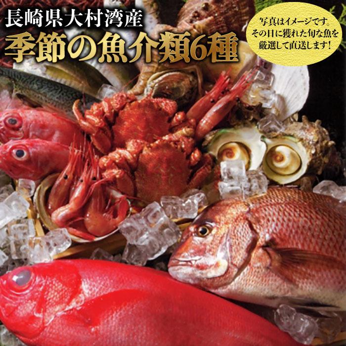 【ふるさと納税】BAK018 【漁協直送!!】大村湾産 季節の魚介類詰合せセット【大村湾漁業協同組合】
