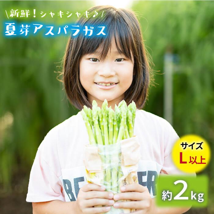 【ふるさと納税】「先行予約」【とれたて新鮮♪】夏芽アスパラガス2kg(Lサイズ以上) [BBW020]
