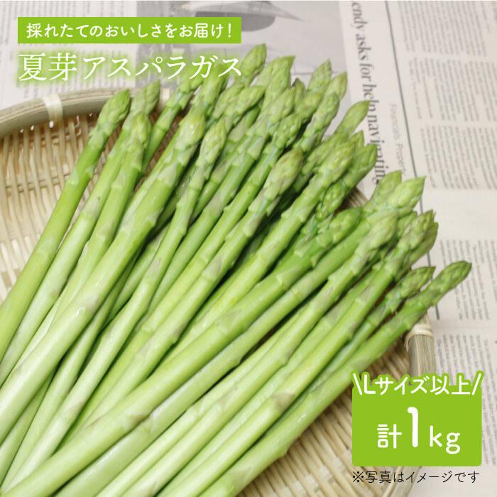 【ふるさと納税】「先行予約」夏芽アスパラガス 1kg(L以上)【前平農園】 [BCG002]