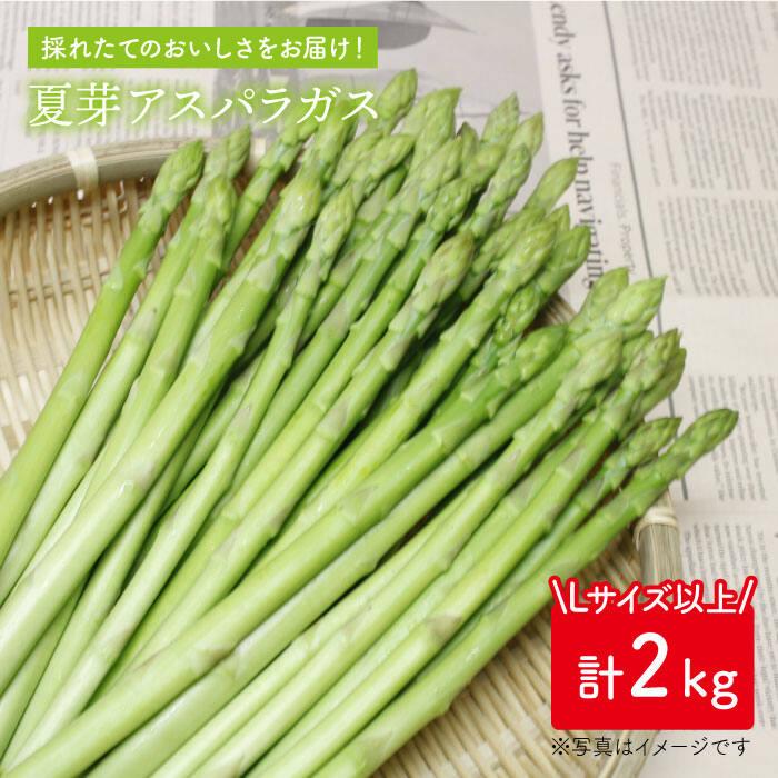 【ふるさと納税】「先行予約」夏芽アスパラガス 2kg(L以上)【前平農園】 [BCG006]