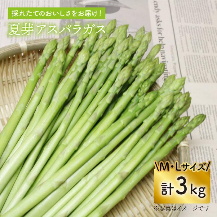 【ふるさと納税】「先行予約」夏芽アスパラガス 3kg(ML混合)【前平農園】 [BCG007]