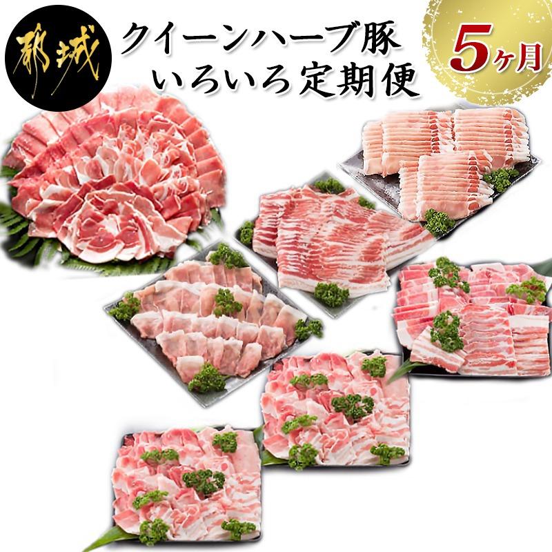 自然豊かな宮崎県都城市の農場で大事に育てられたブランド豚 クイーンハーブ豚 のお肉です 4種類のハーブを配合した飼料を食べて育った銘柄豚の豚肉です ふるさと納税 のいろいろ定期便 5ヶ月 - 毎月お届け 月1回 豚肉の色々な部位やカットをセットでお届け 直営ストア とんかつ用 しゃぶしゃぶ用 スライス 宮崎県都城市は令和2年度ふるさと納税日本一 ミンチ 安心の定価販売 豚バラ 送料無料 焼肉用 T60-2903 ロースなど