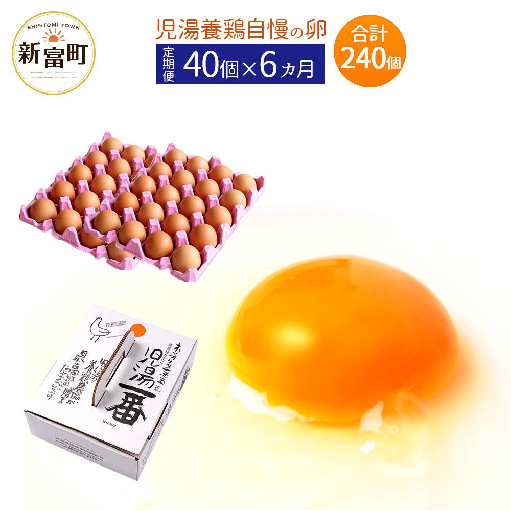 【ふるさと納税】児湯養鶏自慢の卵 計240個 (40個×6回) 6ヶ月定期便 冷蔵 送料無料 たまご 国産