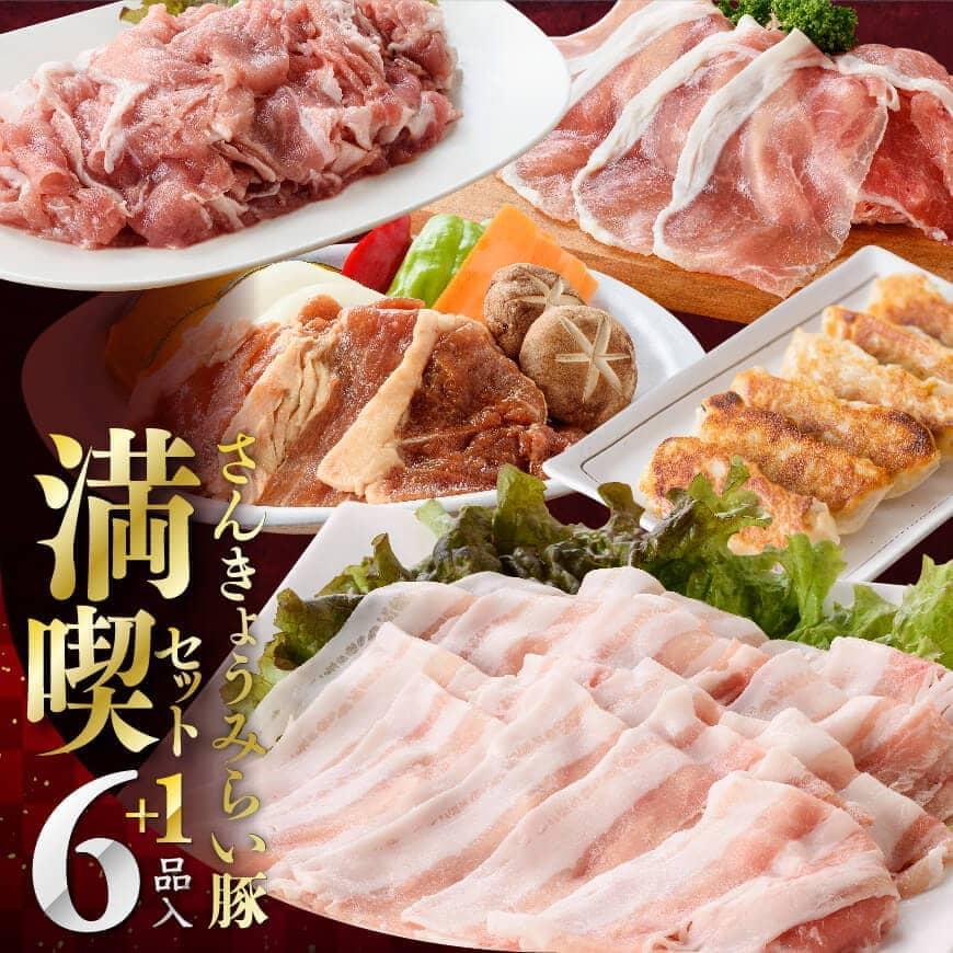 さんきょうみらい 豚満喫セット 豚肉640g 焼き餃子1パック 生ハム190g 830g