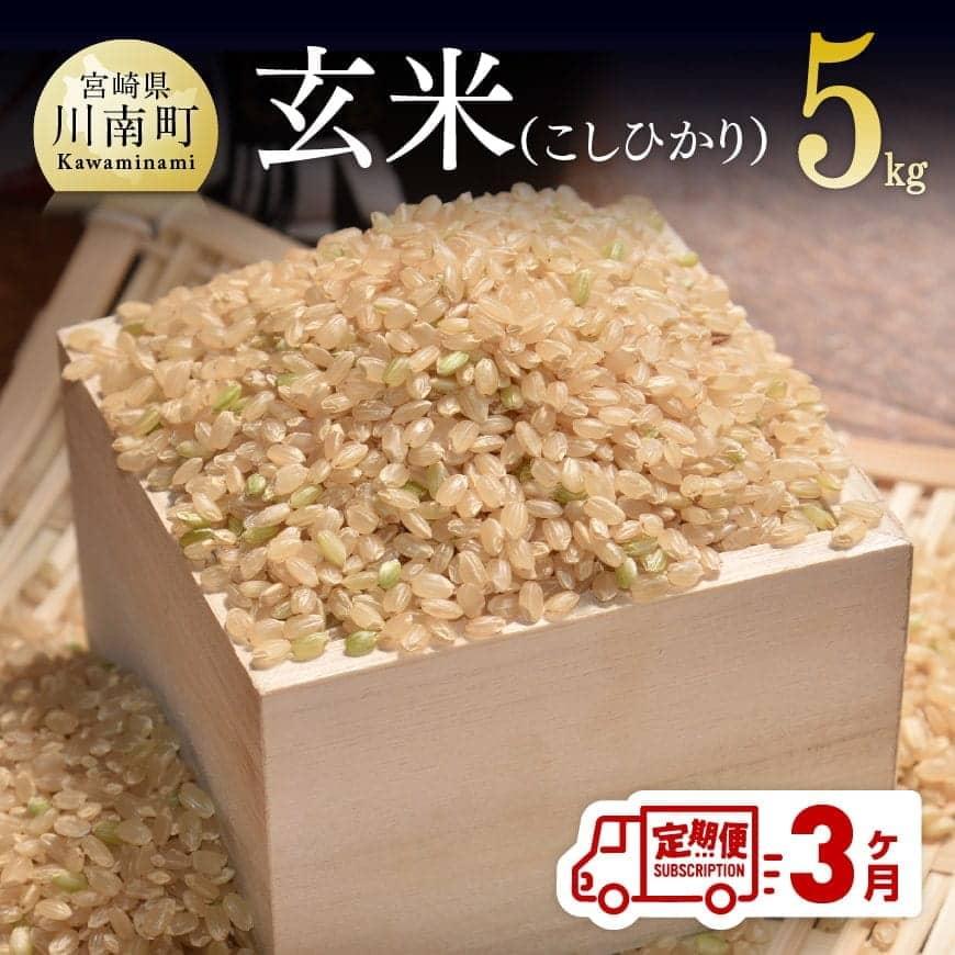 【ふるさと納税】農家直送!玄米(こしひかり)3ヶ月定期便
