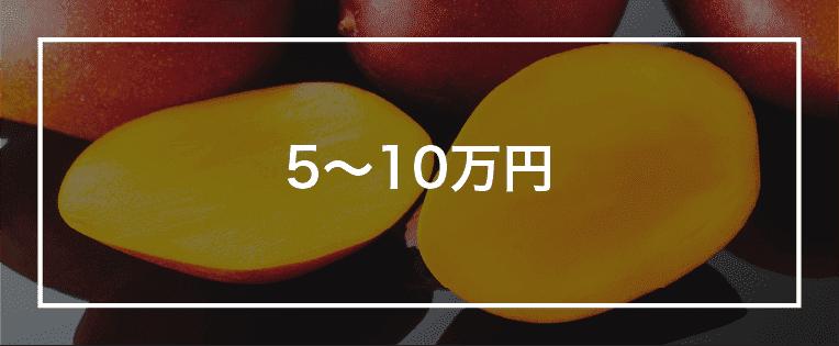 5~10万円以上