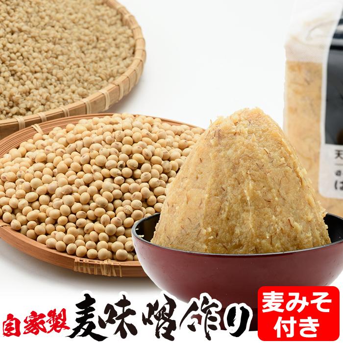 手作り麦味噌セット 麦みそこうじ5kg用×1セット 簡単に合計5kgの麦味噌が手作りできます ふるさと納税 出荷 日本製 九州 はつゆき屋 麦みそこうじセット 麦みそ付き 鹿児島県