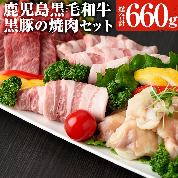 【ふるさと納税】日本一の牛肉!鹿児島県産黒毛和牛・鹿児島黒豚焼肉セット 計660g【ナンチク】