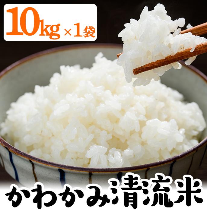 【ふるさと納税】かわかみ清流米(ひのひかり・10kg×1袋)【石橋組】