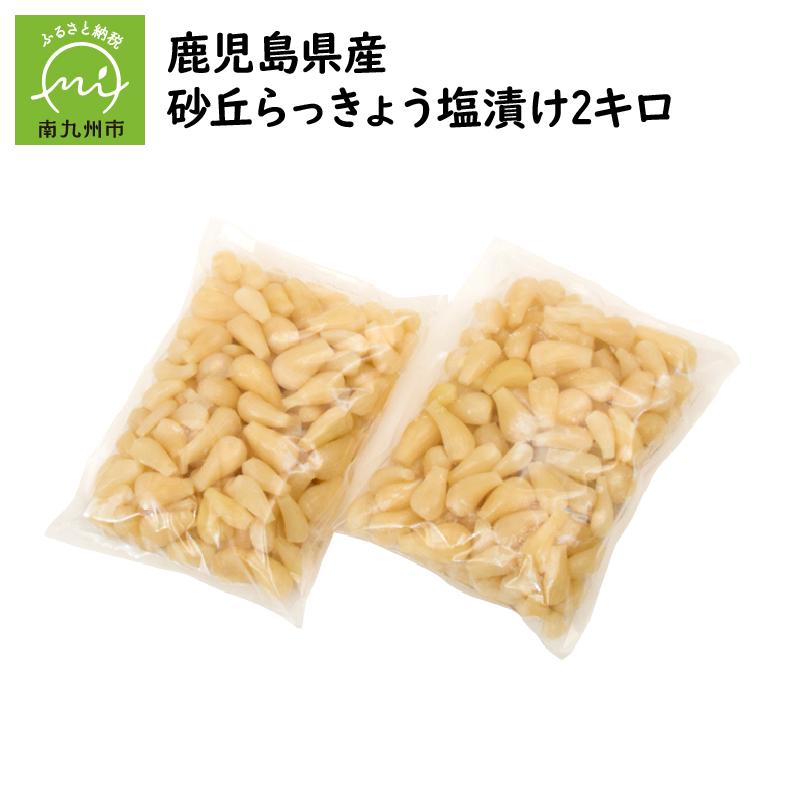 【ふるさと納税】鹿児島県産砂丘らっきょう塩漬け2キロ