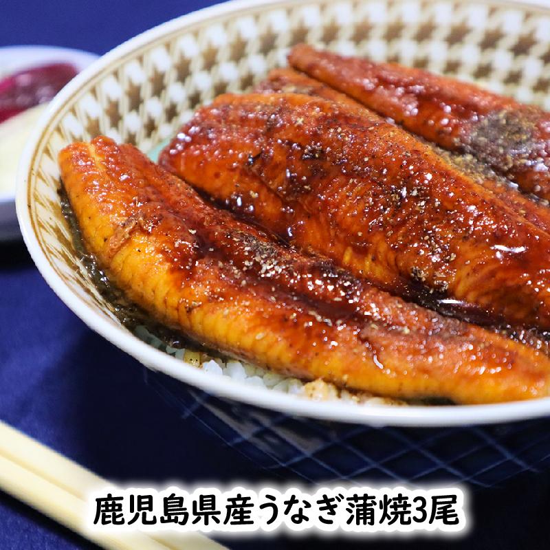 【ふるさと納税】鹿児島県産うなぎ蒲焼3尾 タレ付