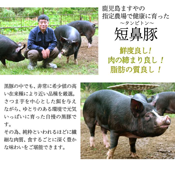【ふるさと納税】鹿児島黒豚「短鼻豚」しゃぶしゃぶセット4.8kg【鹿児島ますや】
