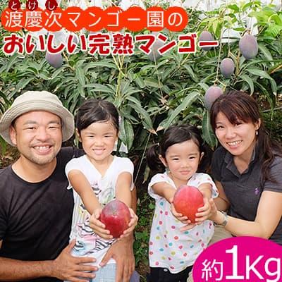 【ふるさと納税】渡慶次マンゴー園の完熟マンゴー1Kg【2021年発送】