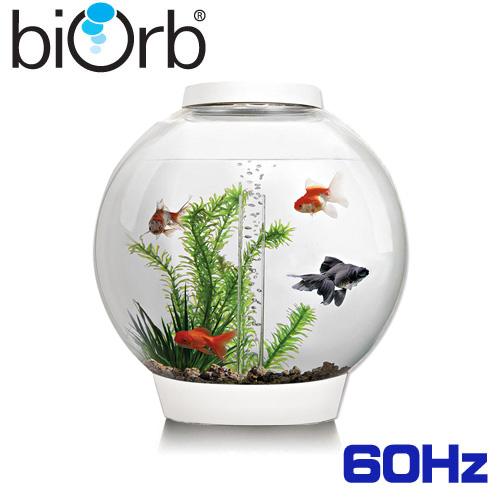 バイオーブ クラシック 30 LED ホワイト 60Hz  47845 (biOrb CLASSIC)[取寄せ商品]【水槽セット】【飼育セット】【アクリル水槽】【小型水槽】